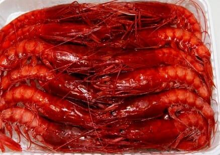 pescheria varpesca olbia crostacei