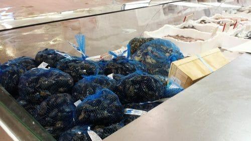 vendita cozze olbia varpesca