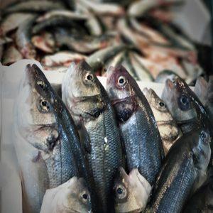 Offerte pescheria online 13