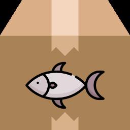 fish box piatti pronti da cucinare