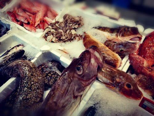 Pesce san Pietro 5